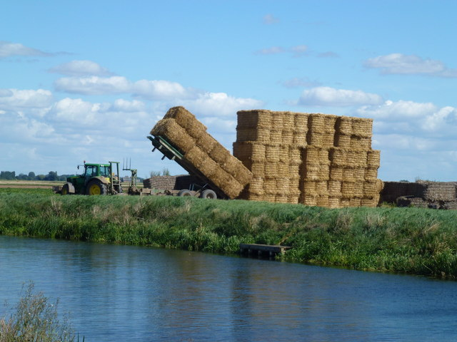 Building a straw stack near March - Photo 3 of 5