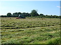 SP1565 : Haymaking near Edge Lane by Nigel Mykura