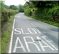SO1223 : Slow down on the approach to residential Talybont-on-Usk by Jaggery