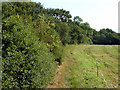 TQ1760 : Bridleway towards Epsom Common by Robin Webster
