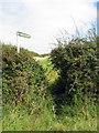 SP9430 : Path to Old Farm by Philip Jeffrey