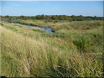 TQ7076 : View from the Saxon Shore Way near Cliffe Fort by Marathon