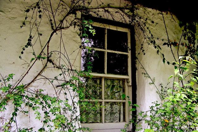 Bunratty Folk Park - Site #7 - Shannon Farmhouse - Window with Lace Curtains