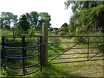 TQ9963 : Kissing gate and footpath leading from Luddenham Court Farm by pam fray