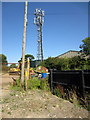 SP9240 : Mobile phone mast by the bridleway by Philip Jeffrey