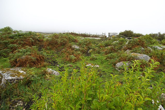 Looking north over rough ground - Errisbeg East Townland