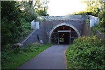 SY6778 : Wyke Road Tunnel by John Stephen