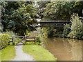 SJ6475 : Trent and Mersey Canal by David Dixon