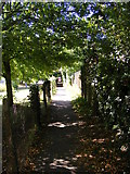 TM3863 : Footpath to Seaview Avenue by Geographer