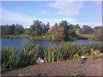 SJ9599 : Chadwick Dams 2 by Tom Hindley