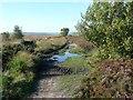 SE0521 : Path alongside an old boundary wall by Humphrey Bolton