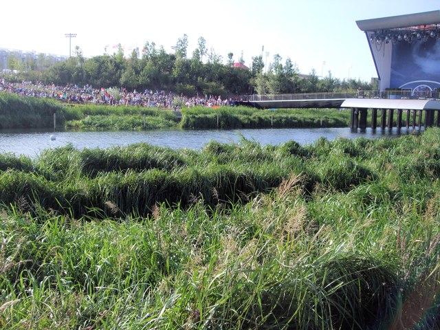 Conservation area near River Lea