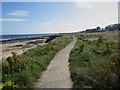 NU2132 : Cliff top path, Seahouses by Graham Robson