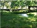SE0621 : Pond in Gallows Pole Hill Plantation, Barkisland by Humphrey Bolton