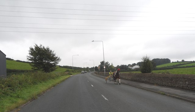 Pony and trap under powerlines crossing the A6