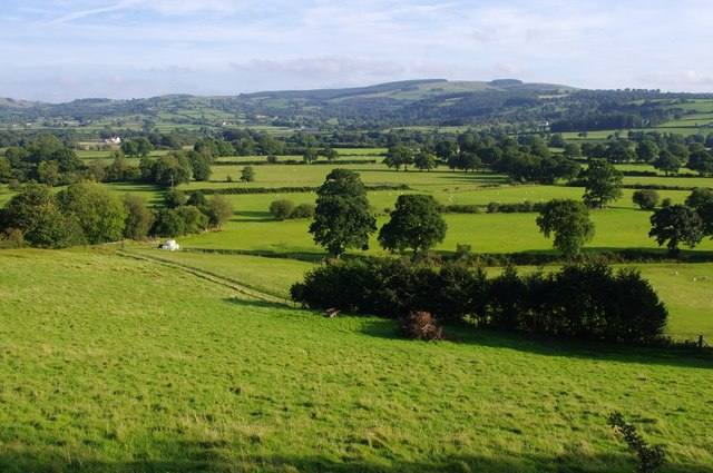 View from layby