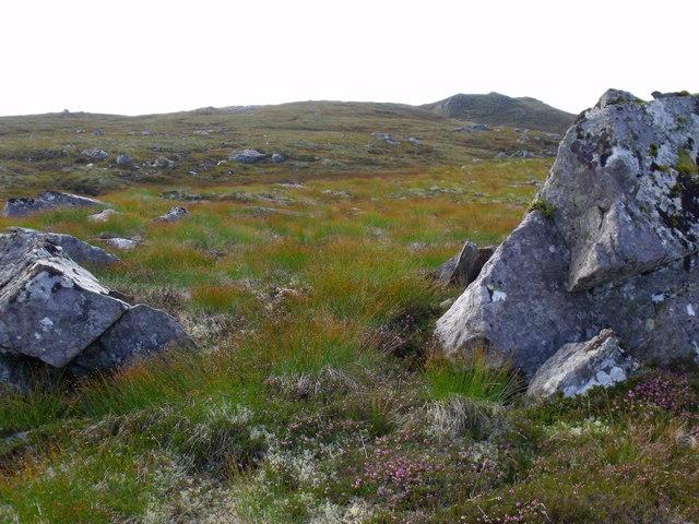 Ground east of Carn Loch na Gobhlaig above Glen Affric