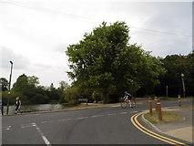 TQ2255 : Mere Pond on Walton Street by David Howard