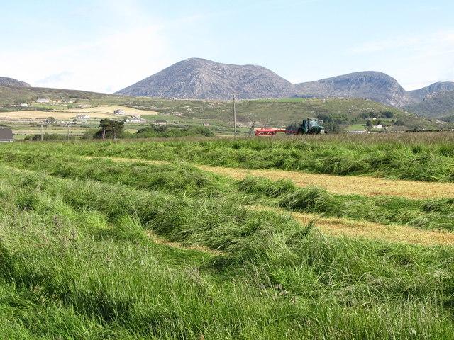 Hay making off Oldtown Road