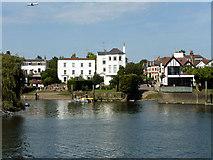 TQ1673 : Riverside, Twickenham by Robin Webster
