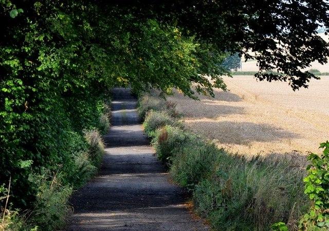 Track near Chapelwell