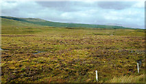 NN3847 : Approaching Rannoch Moor by Mary and Angus Hogg