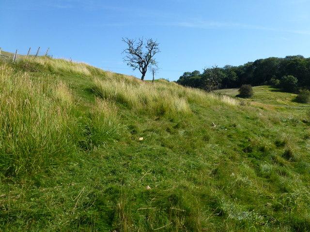 Defensive earthworks at Castle Hymel, Fineshade