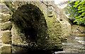 J1486 : The Deerpark Bridge, Antrim (1) by Albert Bridge