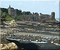 NO5116 : St Andrews - Castle from St Mary's ruin by Rob Farrow