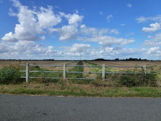 Railings and dike west of Newbridge Farm