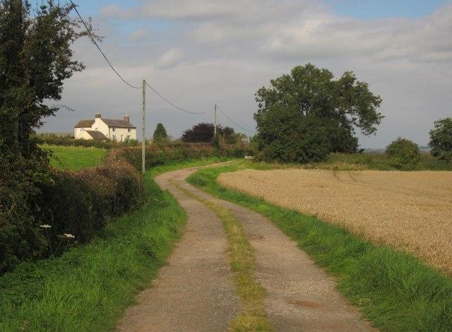 Pirehill Lane