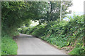 SX0565 : Cornish Lane nr Bodmin by roger geach