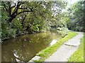 SJ9395 : Bend in the Peak Forest Canal by Gerald England