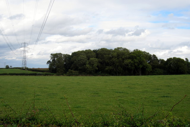 Pylon and spinney