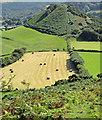 SE9391 : Howden Hill by Scott Robinson