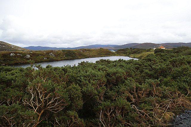 Felmurry Lough - Farragans, Toome and Ranny Townlands