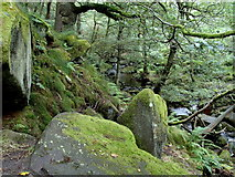 SK2579 : Padley Gorge by Andrew Hill