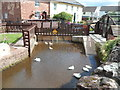 ST1629 : White ducks and a duck crossing, Bishops Lydeard Mill by Jaggery