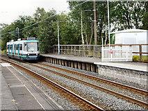 SD7807 : Tram Approaching by David Dixon