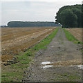 SE9716 : Farm Track on Saxby Carrs by David Wright