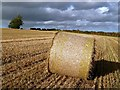 NT7129 : A round bale in a stubble field by Walter Baxter
