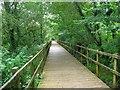 SS8884 : Boardwalk in the woods above Tondu by Simon Mortimer