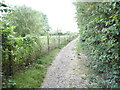 TQ1394 : Footpath to Carpenders Park, Merry Hill by David Howard