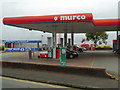SS6190 : Petrol Station at Black Pill by David Dixon