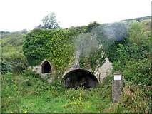 SY9482 : Lime kiln near Church Knowle by E Gammie