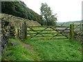 SE0226 : Gates on Stony Lane by Humphrey Bolton