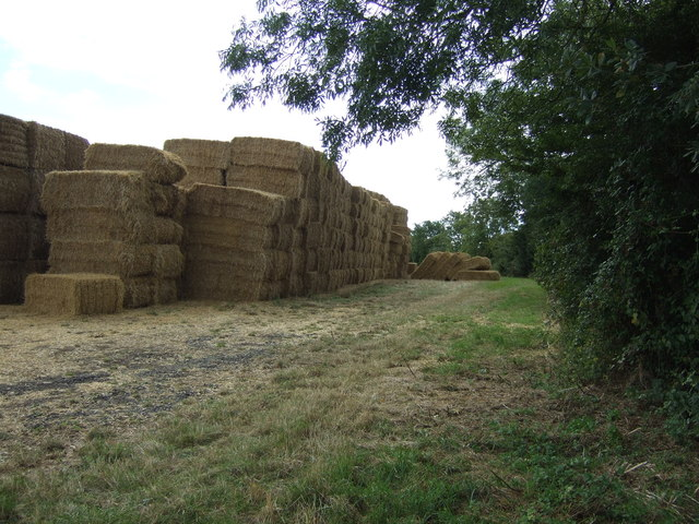 Bales near Hardwick End