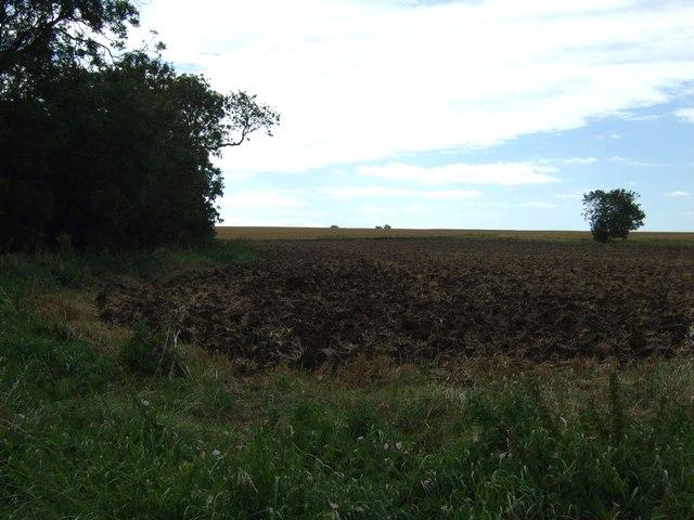 Farmland near Hardwick End