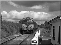 R6554 : Train at Scart level crossing by The Carlisle Kid