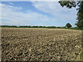 TL0459 : Farmland, Manor Farm by JThomas